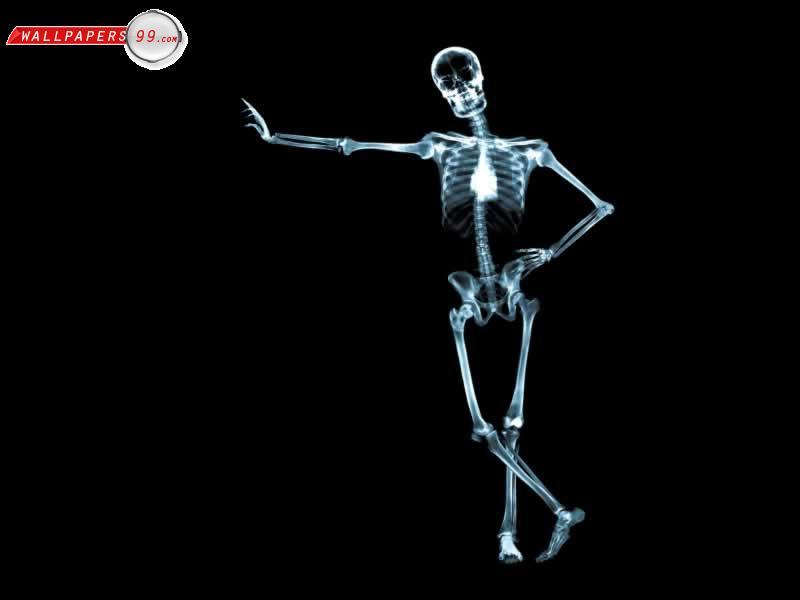gambar tengkorak skeleton image 7 gambar tengkorak skeleton image 4